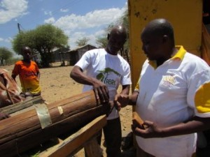 Cornelius Kasisi of ABRC (left) examines an experimental log hive made by the beekeepers of Kapkuikui Self Help Group at Lake Bogoria, Baringo County, Kenya.  On the right is Simon Chesang, group Chairman.