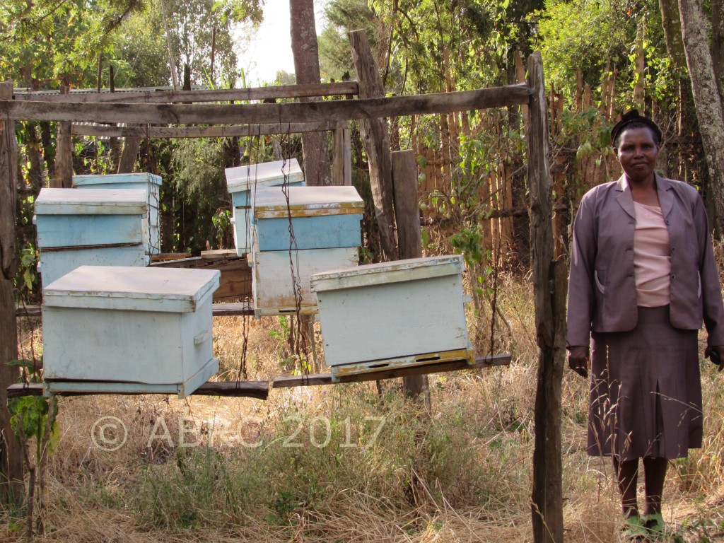 Leah with her beehives at Mau Narok, Njoro, Nakuru.